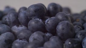 Detail of blueberries. Macro trucking shot. 4K resolution top view. Detail of blueberries. Macro trucking shot. 4K resolution top view stock video