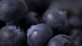 Detail of blueberries. Macro trucking shot. 4K resolution top view. Detail of blueberries. Macro trucking shot. 4K resolution top view stock video footage