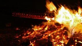 Detail of bonfire.4K stock video footage