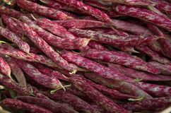 Detail of 'Borlotti' beans in outoor market Stock Images