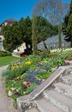 Detail of botanical garden Royalty Free Stock Photo