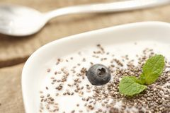 Close up of dessert with blueberry, yoghurt and chia seeds. Detail of bowl on wooden background with leaf of mint royalty free stock image