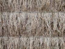 Detail of brushwood  fence Royalty Free Stock Image