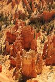 Detail of Bryce Canyon Royalty Free Stock Images