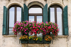 Detail of a building with window and flower box in Venice, Italy. Venice is one of the most important tourist destinations in the world for its celebrated art Stock Image
