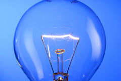 Detail of a bulb. In front of a blue background stock photography