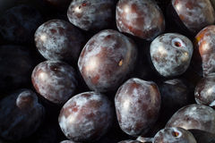 Detail of bunch of plums Royalty Free Stock Images