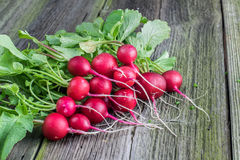 Detail on a Bunch of Radishes on a Old Wooden Board Royalty Free Stock Photography