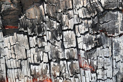 Detail of burnt wood Stock Photography
