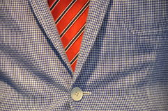 Detail of Business suit. Detail of checkered Business suit with jacket and tie Royalty Free Stock Photo