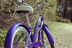 Detail of bycicle on a springtime road. The Detail of bycicle on a springtime road Royalty Free Stock Images