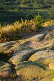 Detail of Cadillac mountain Royalty Free Stock Image