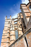 Detail of Cathedral of Palma Royalty Free Stock Images