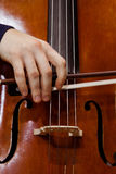 Detail of the cello in the hands of a musician Stock Photos