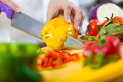 Detail of a Chef at work Stock Photography