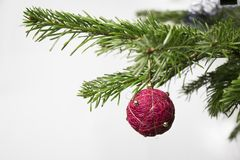 Detail of christmas fir tree with red bulb on white background. stock image