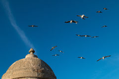 Detail of the city fortification, Essaouira, Morocco Stock Image