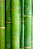 Detail close-up view of bamboo sticks Royalty Free Stock Images