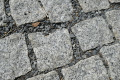 Detail of cobble street texture Stock Images