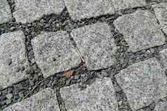 Detail of cobble street texture Stock Photography