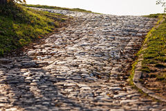 Detail of cobblestone path Royalty Free Stock Photos