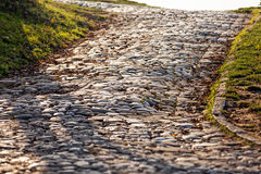 Detail of cobblestone path Royalty Free Stock Photography