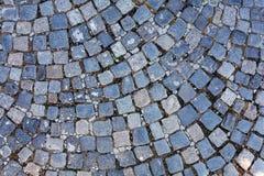Detail of cobblestone path Royalty Free Stock Photos