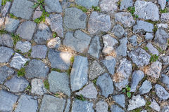 Detail of cobblestone path Stock Images