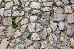 Detail of cobblestone path Royalty Free Stock Image