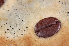 Detail of a coffee bean floating in coffee foam royalty free stock photo