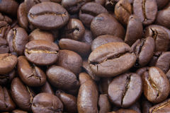 Detail of coffee beans Royalty Free Stock Images