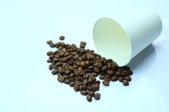 Coffee beans with paper cup. Detail of coffee beans with paper cup Stock Photo