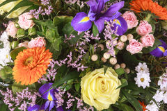 Colorful spring bouquet Stock Photography