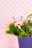 Detail Colorful  bouquet flowers in blue vase Royalty Free Stock Images