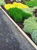 Detail of a colorful summer garden Stock Photos