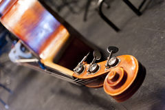 Detail of the  contrabass head Stock Photography