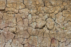 Detail of cracked clay background. Royalty Free Stock Photos