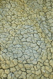 Detail of a cracked earth, backround Royalty Free Stock Image