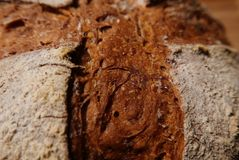 Detail of crust of artisanal bread showing the slash marks Stock Photography