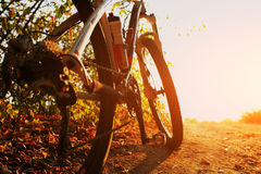 Detail of cyclist man feet riding mountain bike on outdoor royalty free stock images