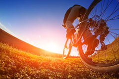 Detail of cyclist man feet riding mountain bike on outdoor trail in sunny meadow. Detail of the bicycle. Wheel. Legs and hand. Sunset. Low angle and fisheye Royalty Free Stock Photo
