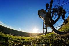 Detail of cyclist man feet riding mountain bike on outdoor trail in sunny meadow. Detail of the bicycle. Wheel. Legs and hand. Sunset. Low angle and fisheye Royalty Free Stock Images
