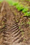 Detail der Bahn vom Reifen des Traktors auf dem Feld während der Frühlingszeit Flacher Fokus stockfotografie