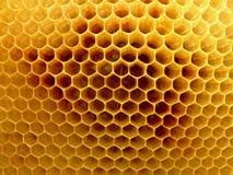 Detail der Bienenwabe Lizenzfreie Stockfotografie