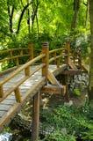 Detail der Brücke im japanischen Garten Stockfotografie