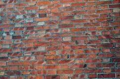 Detail der Wand der roten Backsteine Lizenzfreie Stockfotografie