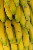 Detail des Bündels Bananen Stockbilder