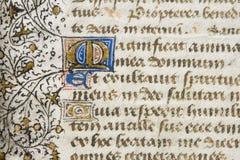 Detail des belichteten Manuskriptes Stockbilder
