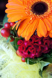 Detail des Blumenstraußes Stockbilder
