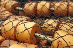 Detail des Fischernetzes im eisigen Straßen-Punkt Alaska USA Stockfotografie
